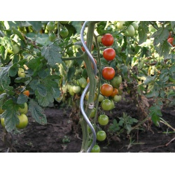 Spirálová tyč na rajčata...